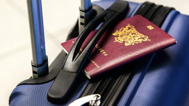 Frequent Flyer - passport and case